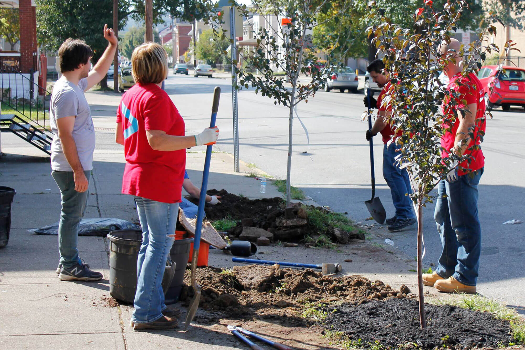 Volunteers help ReNewport Executive Director Josh Tunning (far left) plant trees where they've depaved sections of the sidewalk in Newport, Kentucky. (Photo by Bonnie Jean Feldkamp/Eye on Ohio)